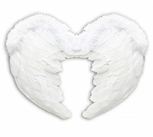 FEATHER WINGS 37x50cm - WHITE