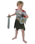 Historical Gladiator Rome Kids Costume Book Week Costume