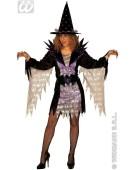 Super Witch Purple Adult Ladies Fancy Dress Costume