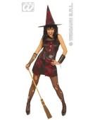 "Shrill Witch Set Medium 12 -14"" Ladies Fancy Dress Costume"