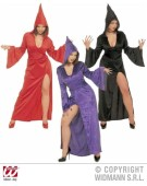 Gothic Temptress Medium UK 10 - 12 Adult Ladies Fancy Dress Costume