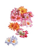 Flower Hair Clip Accessory Fancy Dress