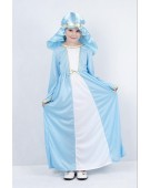 Mary (M) costume Kids Fancy Dress